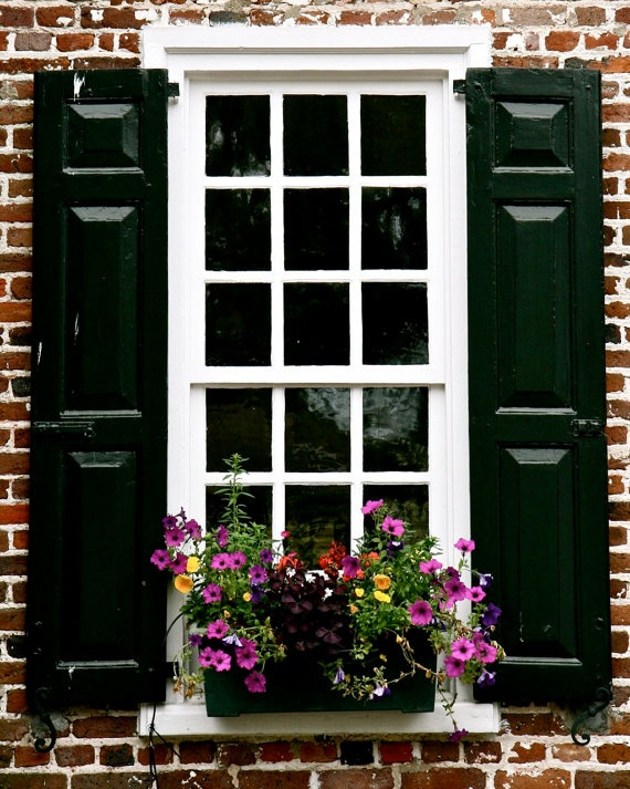 like the black shutters and the pretty flowers in the ...