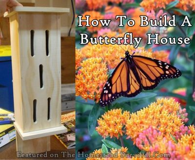 The Homestead Survival | Build a Homemade Butterfly House | Gardening Friends - DIY Project - http://thehomesteadsurvival.com