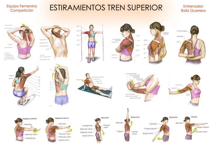 ¿Estiramientos? ¿Riesgo de lesión y menos rendimiento? - Entrenador Personal Madrid - SPORTANDLIFE360