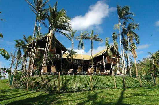 Treehouse Hostel, Mission Beach. Queensland  #Australia
