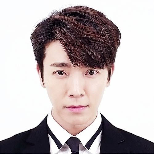 donghae guest house smile gif