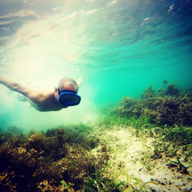 "66 Likes, 1 Comments - Alpha Lima Tango Oscar (@4lto) on Instagram: ""Elaar Beach, Kei Kecil, Kei Islands.  #adventure #maluku #malukutenggara #keiislands #keikecil…"""