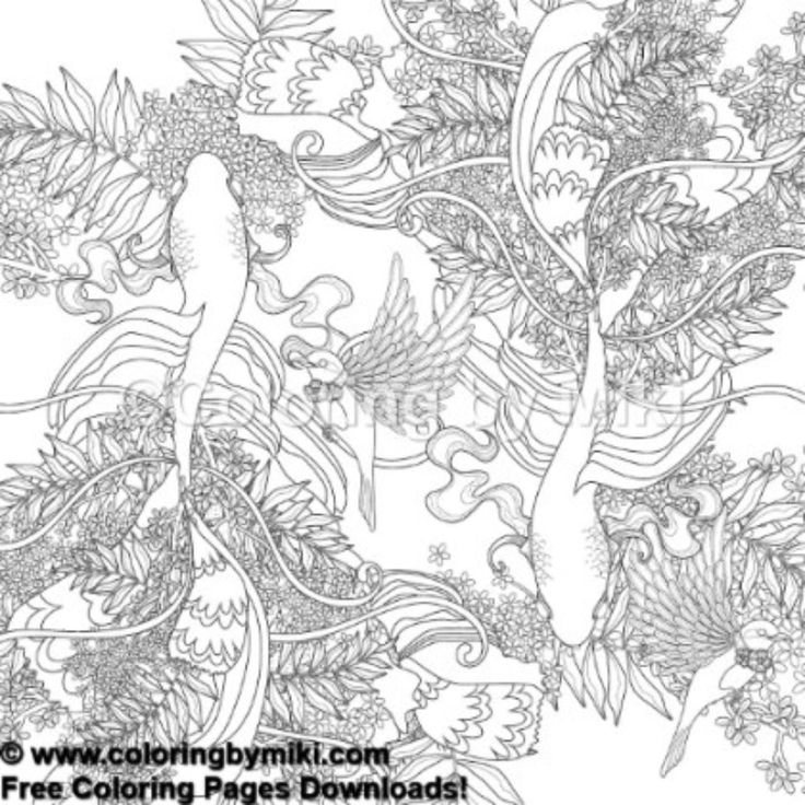 Zentangle Japanese Design Koi Coloring Page 677 freeprintable coloring
