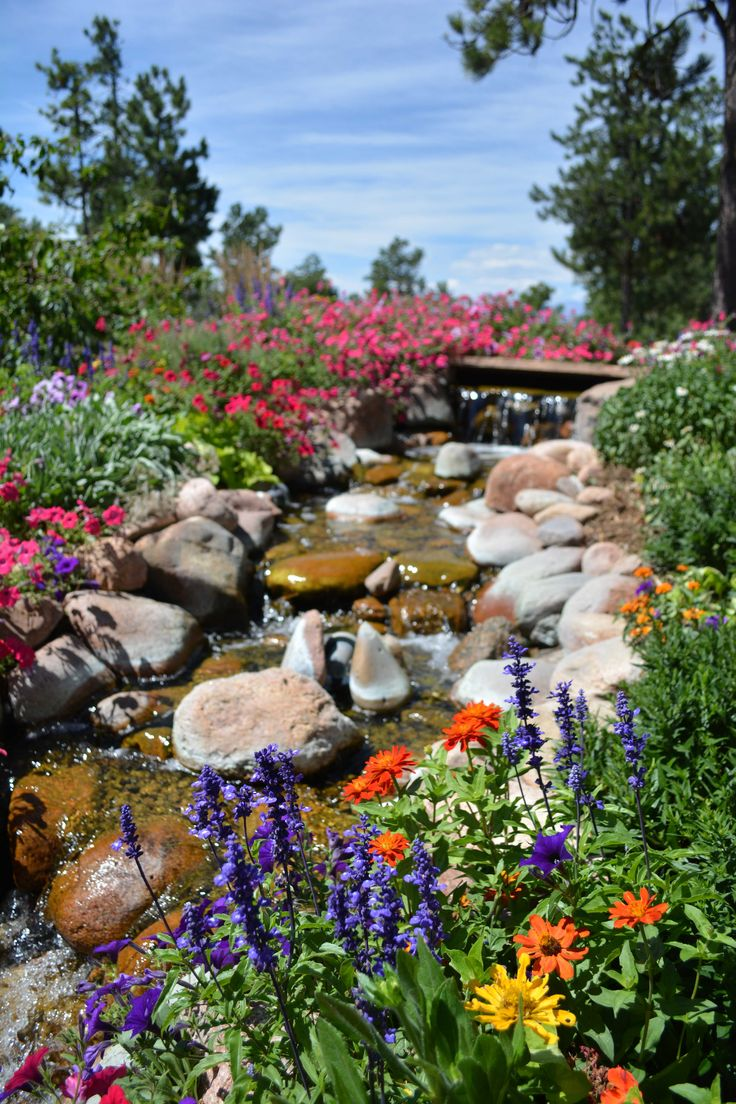 25 best summer flowers images on pinterest summer flowers residential lawn care and maintenance colorado springs mightylinksfo