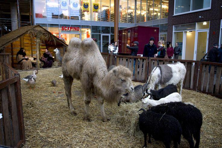 Kerststal in winkelcentrum Zaailand vorig jaar.  Foto LC/Sietske Bouma