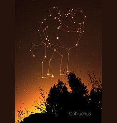 ophiuchus zodiac constellations sign with forest vector