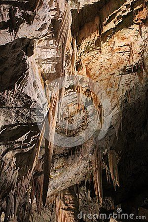 Postojna Cave is a cave in Slovenia