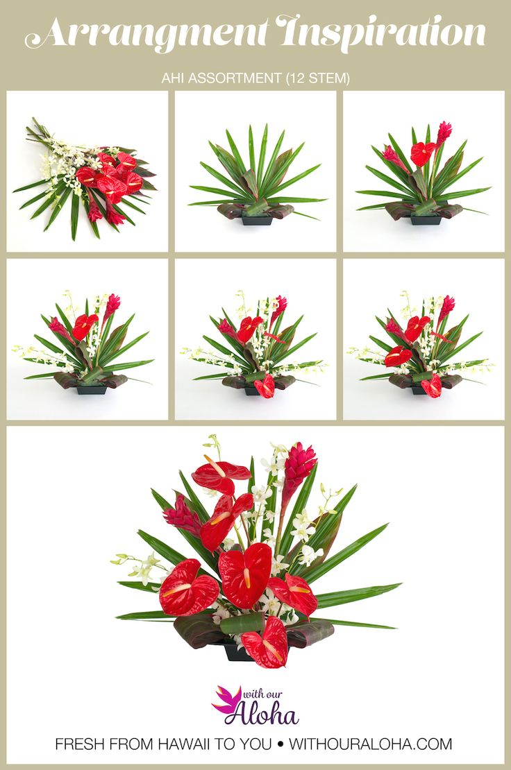 8 best diy hawaiian flower arranging images on pinterest hawaii red ginger grows profusely all over the big island of hawaii one of our favorite izmirmasajfo