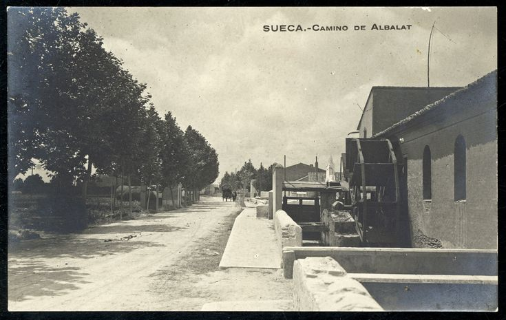 Camino de Albalat : Sueca. (s.a.) - Anónimo