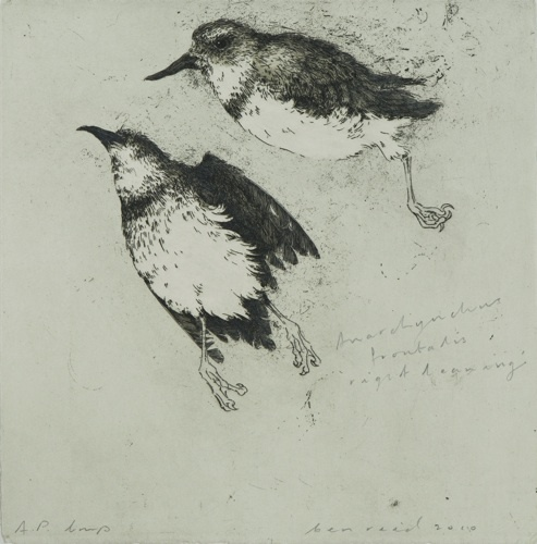 Ben Reid, Right Leaning, drypoint,intaglio and relief on 240 x 240 mm paper, from an edition of 12, 2010. Contact gallery regarding availability.