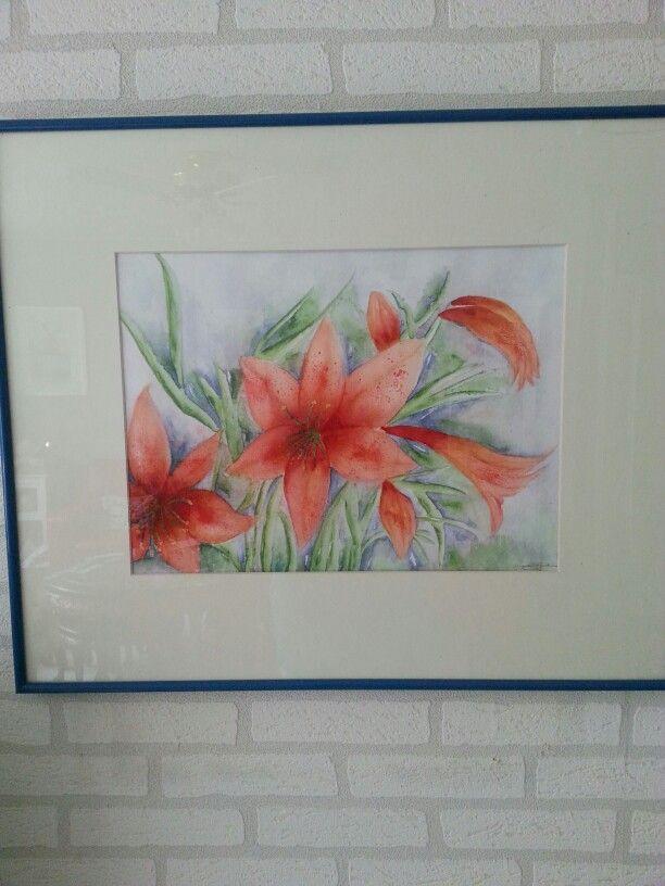 lelie in aquarel