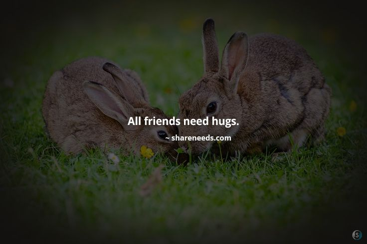 All friends need hugs.  #friendshipquotes