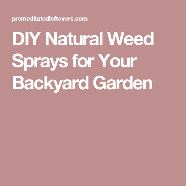 DIY Natural Weed Sprays for Your Backyard Garden
