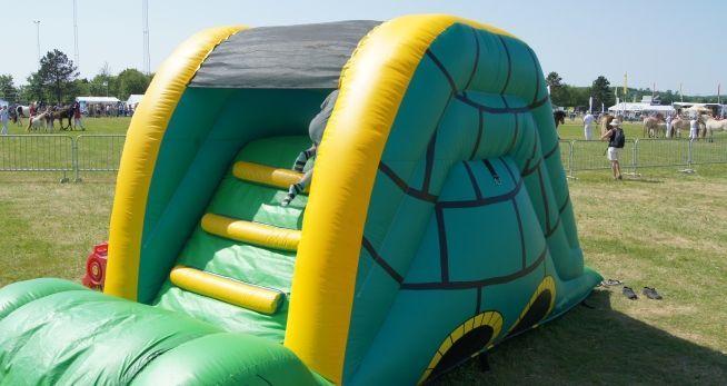Terry Turtle Slide