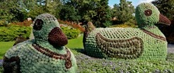 Jesperhus blomsterpark