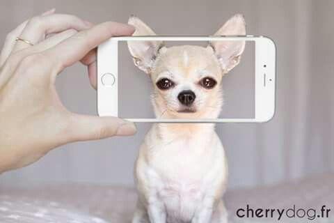 Un petit selfie ?? 😍