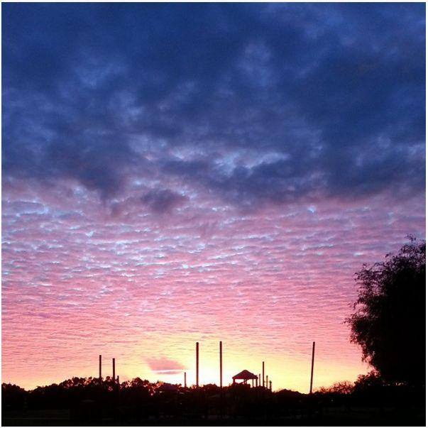 Sun. Early morning walks! Good morning sun  #photoaday #WPNliveit #nofilter emlybss