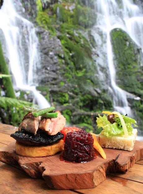 Hangi, Duck, Kumara, Portabella, Pikopiko, Horopito Beetroot Relish With Rewana Bread and Salad