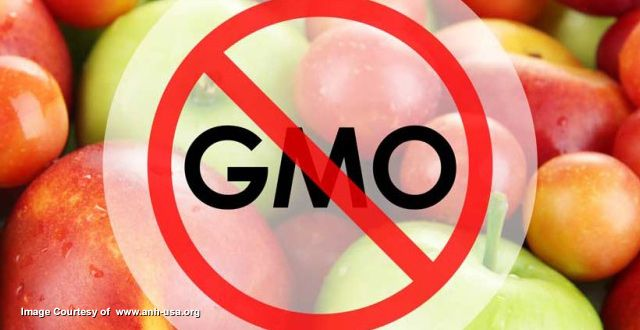 Philippines Supreme Court bans all GMO products from the country in major victory for native farmers