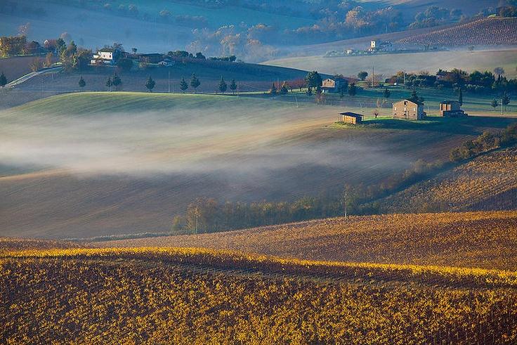 Autumn by Luca Giustozzi @ http://adoroletuefoto.it
