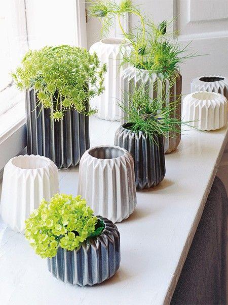 Více než 25 nejlepších nápadů na Pinterestu na téma Feng Shui - pflanzen für wohnzimmer
