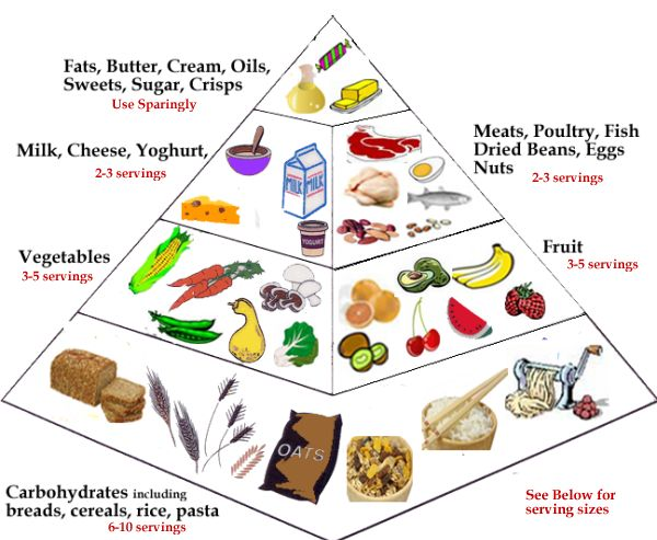 nutrition+triangle+chart | Recipes and Nutrition For Students: Recipes and Basic Nutrition Tips ...