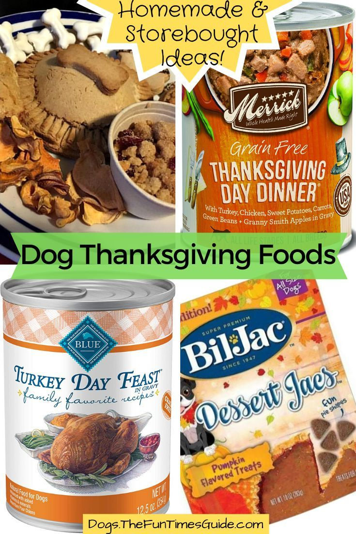 Thanksgiving Food For Dogs Easy Homemade Dog Treat Recipes For