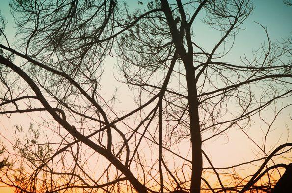 Sunrise @ Bromo
