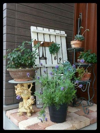 色々な植物を組み合わせて飾る時は、こちらのようにレンガをアクセントにすると素敵です。植物も少しずつ高低差をつけたり、ポイントになるアイテムも一緒にディスプレイしたり。さっそくお手本にしたい、おしゃれなレイアウトです。