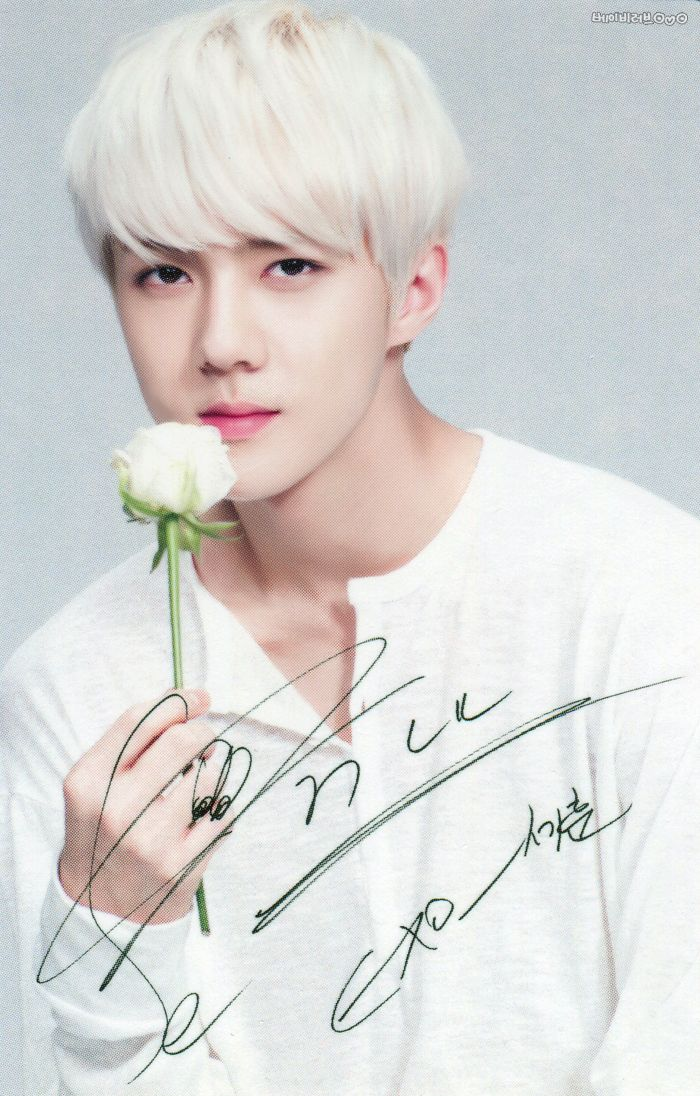 Sehun oppa <3 He may play hard but I know him very well <3 He is very kind,sincere and he is very nice with everyone and most of all EXO and his fans......<3
