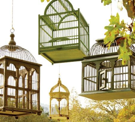 8 Ways to Decorate with Birdcages   World Market