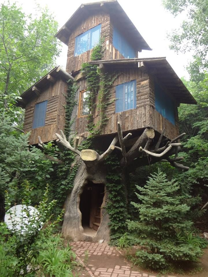 "Doesn't this tree house look like it came straight out of a fairy tale? You'll find lots more examples in our ""Treehouses for the Child Within"" album on our site at http://theownerbuildernetwork.co/quiet-spaces/tree-houses/ Don't forget to share your thoughts in the comments section."