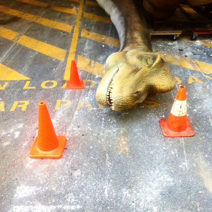 We papped Brachiosaurus blissfully napping in the loading dock before the big reveal earlier this morning. It can be a tiresome, tough gig for a 150 million year old celebrity dinosaur. Dinosaur Discovery: Lost Creatures of the Cretaceous opens 27 March www.qm.qld.gov.au/dinosaur #QMdinodisco