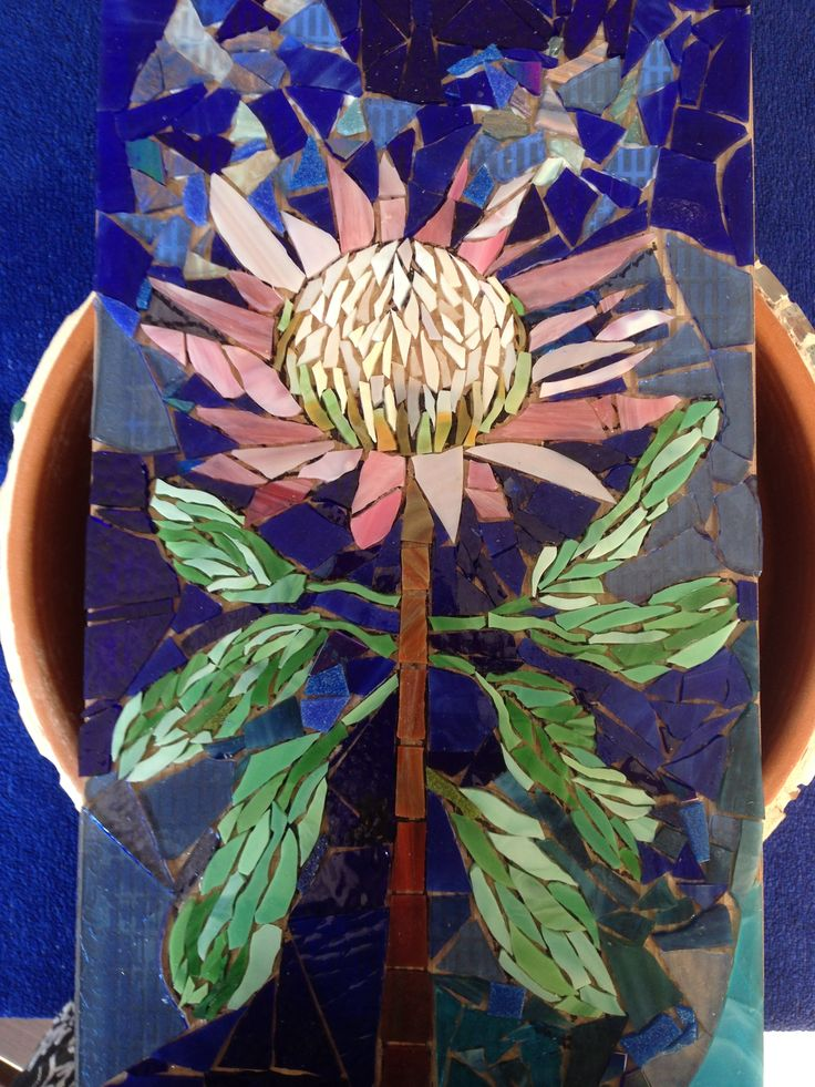 king protea project, finished glass, just have to decide what colour grout to use. Dec 18 2014