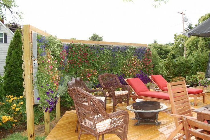 A privacy wall turns a backyard deck into a flowery oasis.
