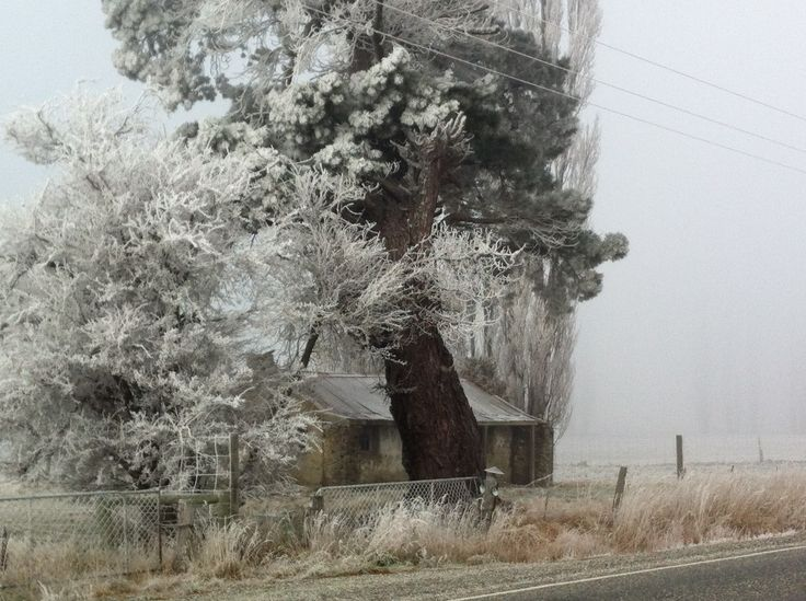 A winter hoar frost in the Fruitlands valley near Alexandra, Central Otago