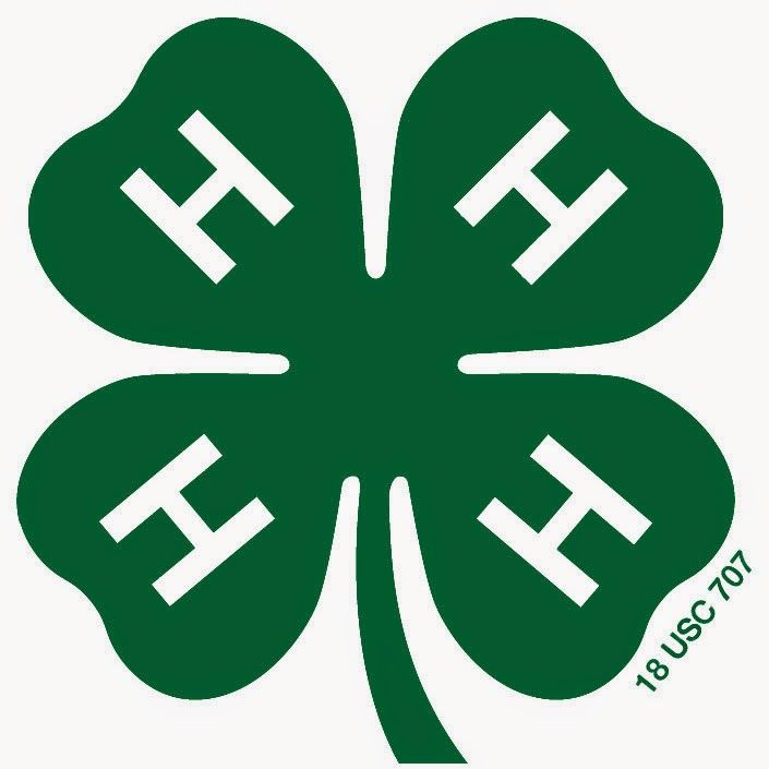 Forsyth County 4-H Club: What it was and what it is today
