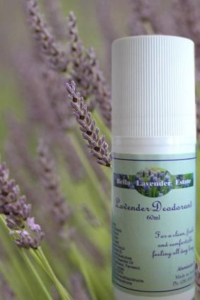 Here's the latest from Bella Lavender Estate...