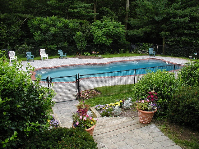 270 best Freeform Pool Designs images on Pinterest | Pool designs ...