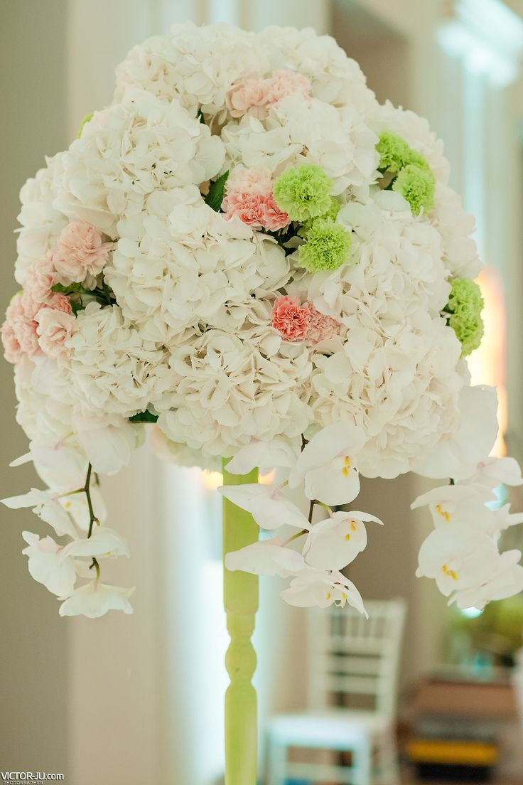 White hydrangea, orchids and chrysanthemum centerpieces