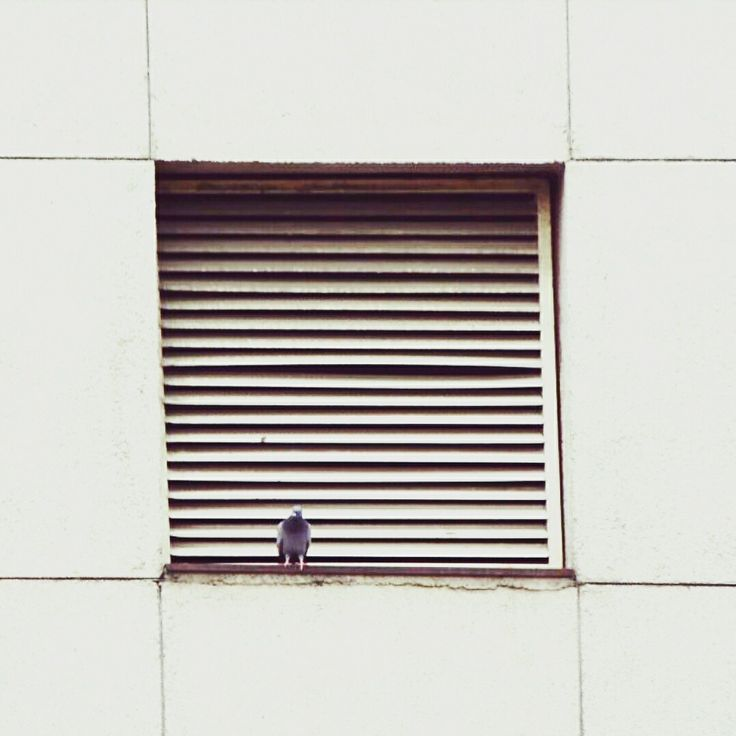 Minimal photography Photographer : artaagraph