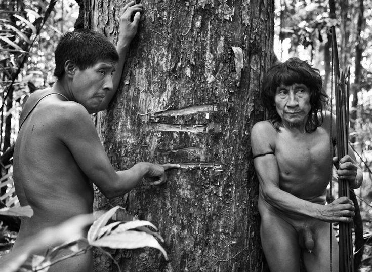 Os Awá-Guajá por Sebastião Salgado