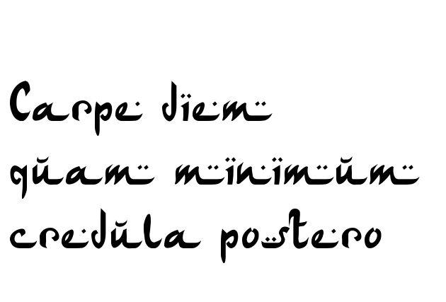 Carpe diem quam minimum credula postero Tattoo in Arabic Writing ...