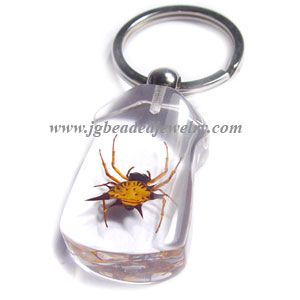 Real Spider Key Chain  Bugs  spider  Keychain  2576e4602d4c