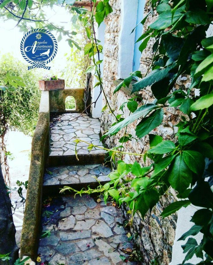 Old Village of Alonissos!!🏡🏡🏡🏡🏡 #angelos_apartments #Alonissos #Sporades #Greece #greekislands #discovergreece #old_village #chora #summer #discoveralonissos #visitalonissos #island