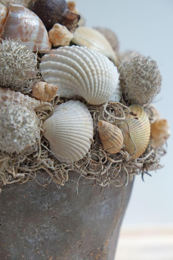 ElsaRblog: Mooie decoratie met schelpen (Diy Interieur ideeën )