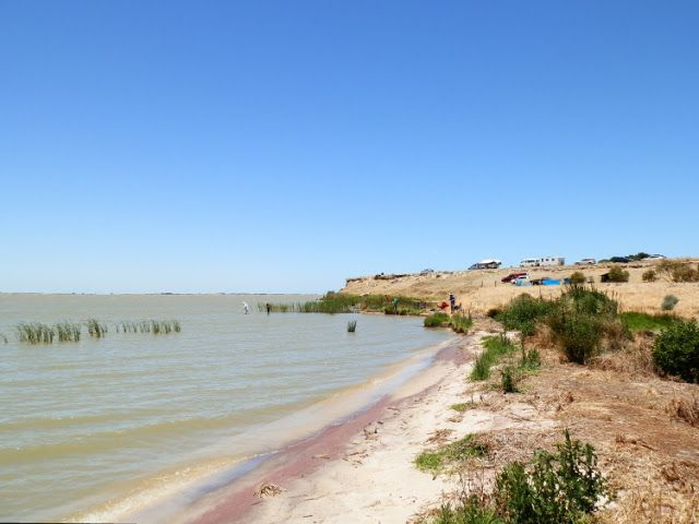Another sensational day at Mark Point Camping area on South #Australia's massive Lake Alexandrina!