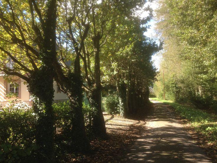 L'entrée par le chemin de randonnée, entrance by the small way