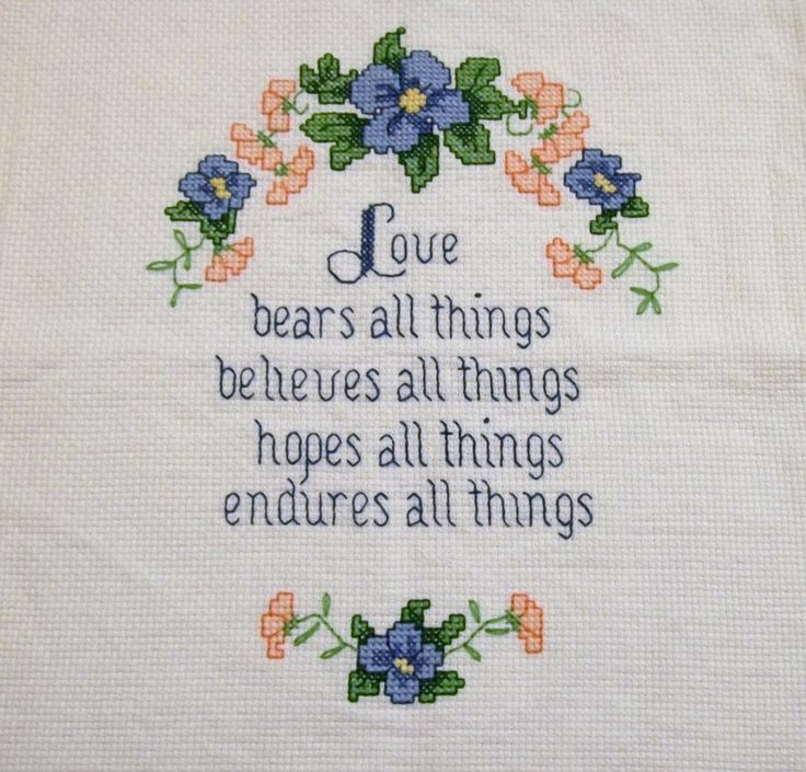 Image result for things that kind of look like bears