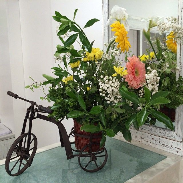 Where do you cycle? Stay with us at Hotel Madeira!  #HotelMadeira #HappyMoments #Reception #FlowerFestival #Flowers #FlowerFestival2015 #Funchal #Decorationmoments #Madeira #MadeiraFlowerFestival